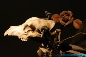 Œuvre de Jean Tinguely - Musée Tinguely - Bâle - 2012 - © Jessie A. Chevin